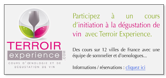 Cours oenologie Terroir Experience